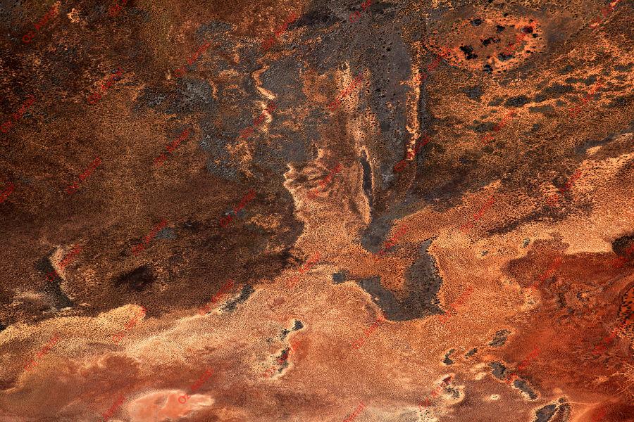 Rust on the Plain.jpg